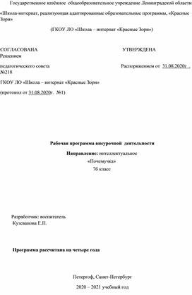 """Рабочая программа по интеллектуальному направлению """"Почемучка"""""""