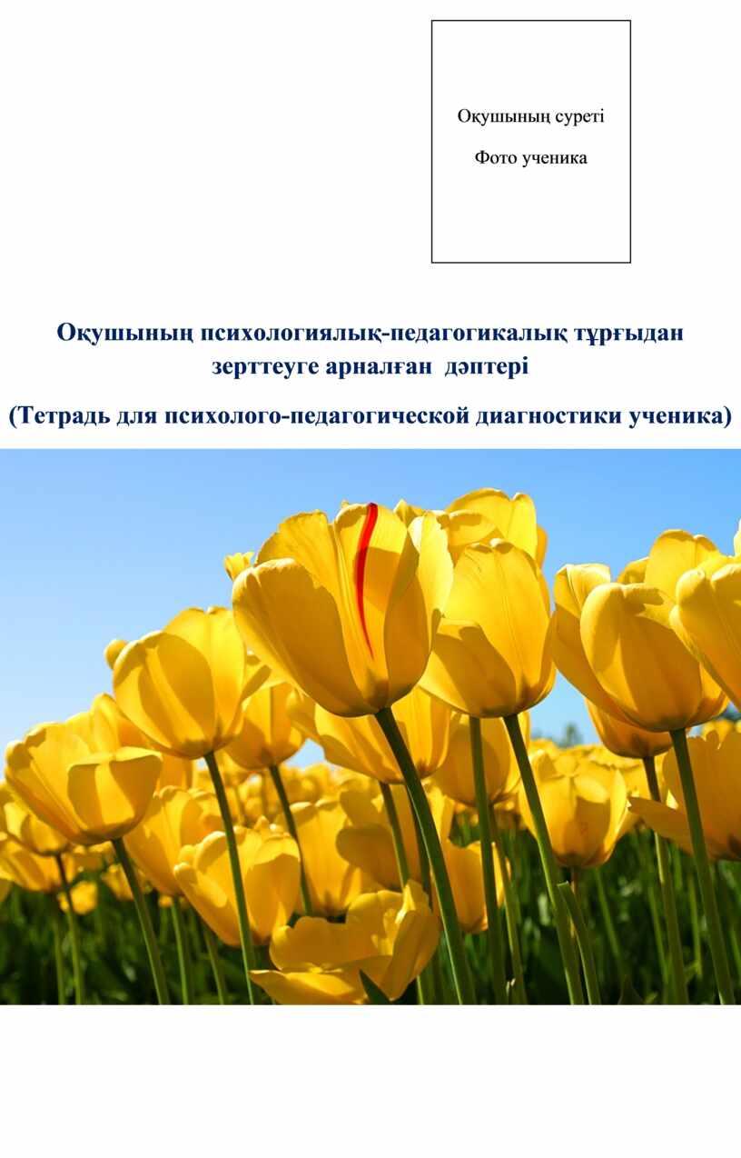 Оқушының психологиялық-педагогикалық тұрғыдан зерттеуге арналған дәптері (