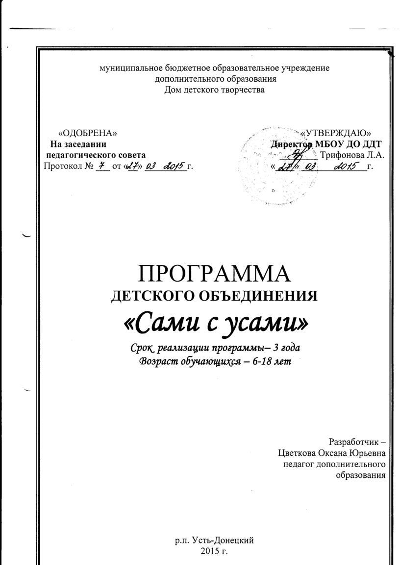 "Модифицированная программа  ""Страна фантазия"""