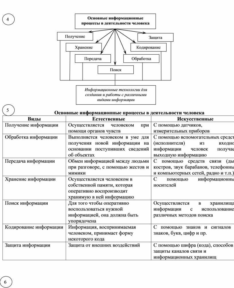 Основные информационные процессы в деятельности человека