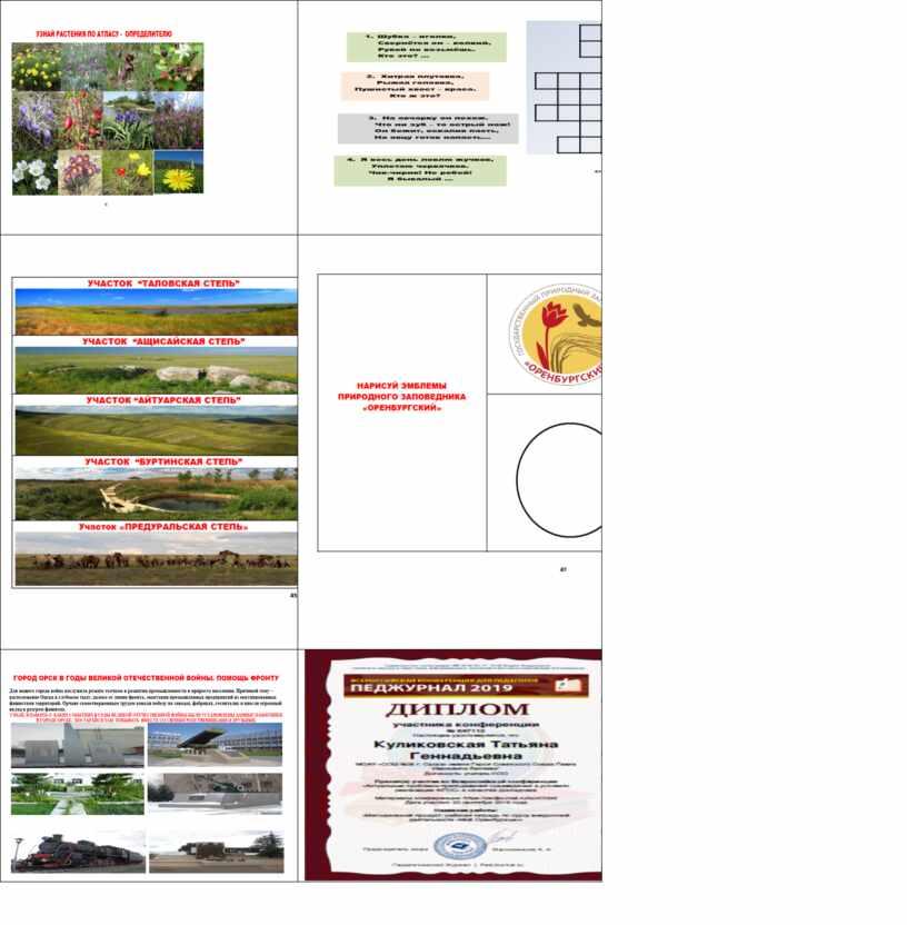 Рабочая тетрадь «Моё Оренбуржье» по курсу внеурочной деятельности как условие реализации ФГОС в начальной школе