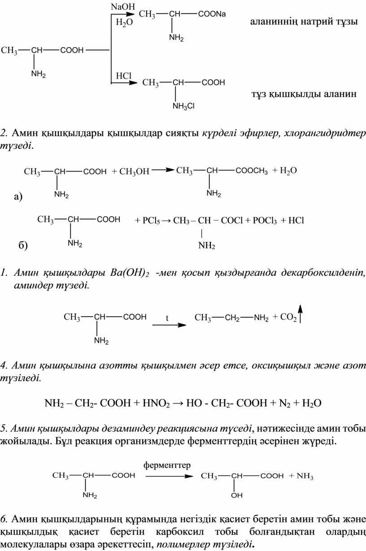 Амин қышқылдары қышқылдар сияқты күрделі эфирлер, хлорангидридтер түзеді