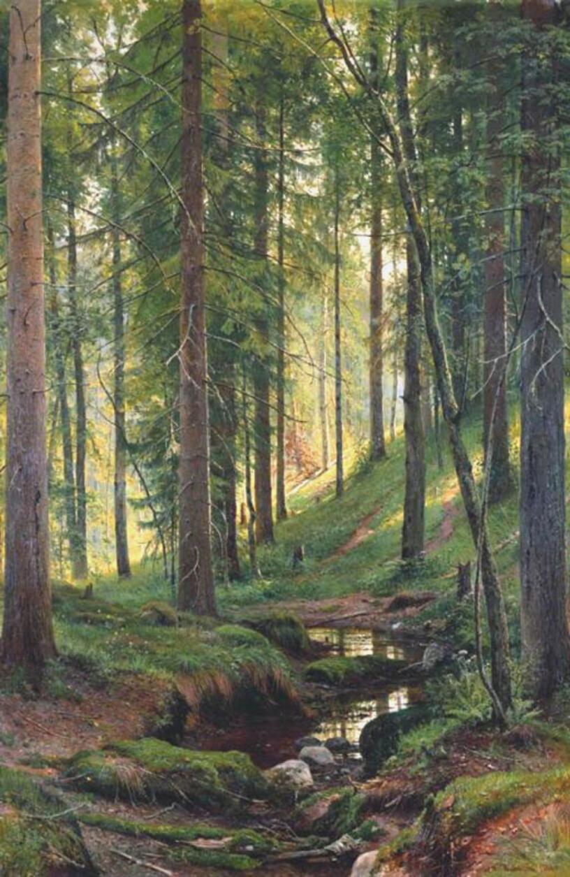 Приложение 7 (3) к Берегите лес