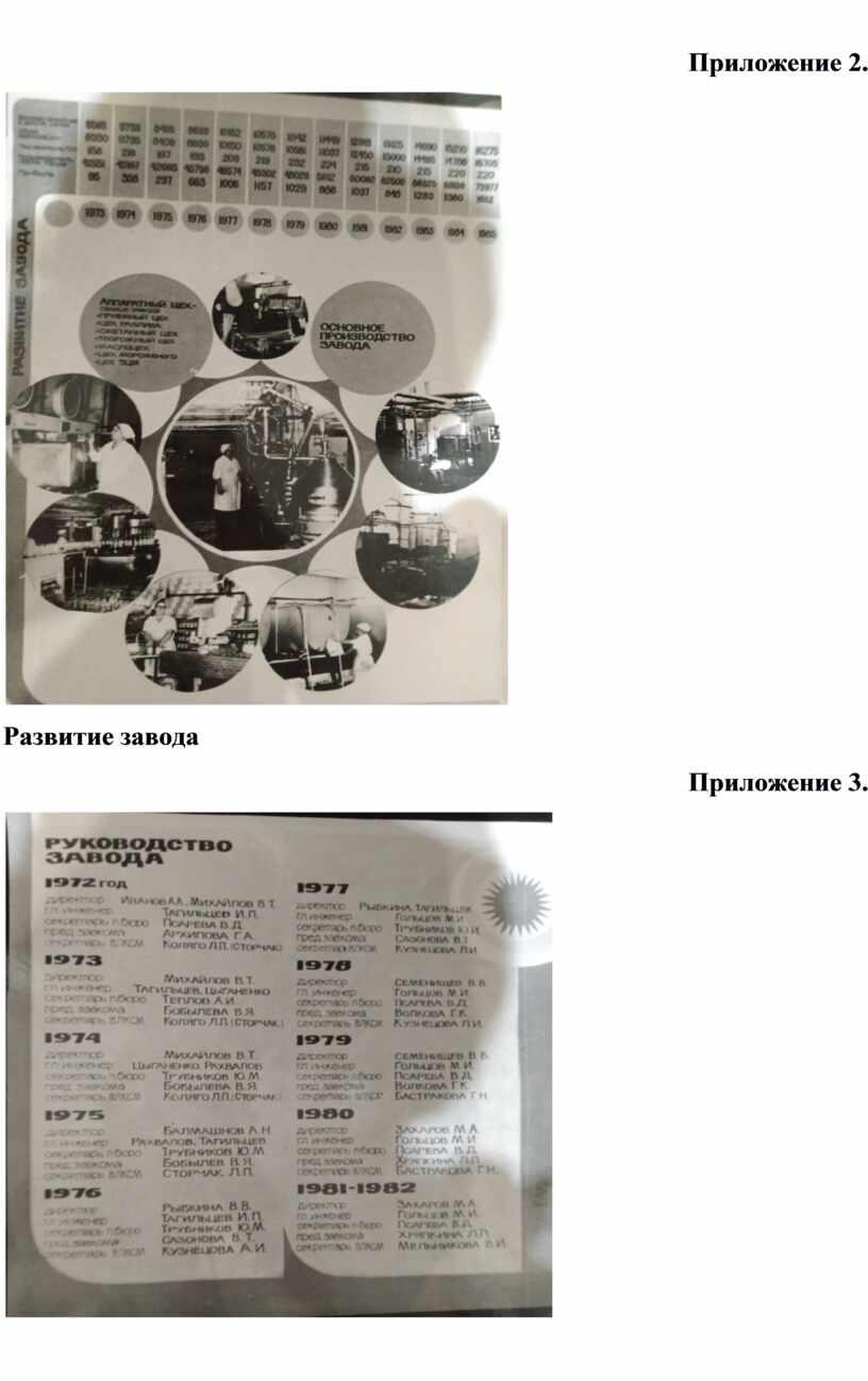 Приложение 2. Развитие завода