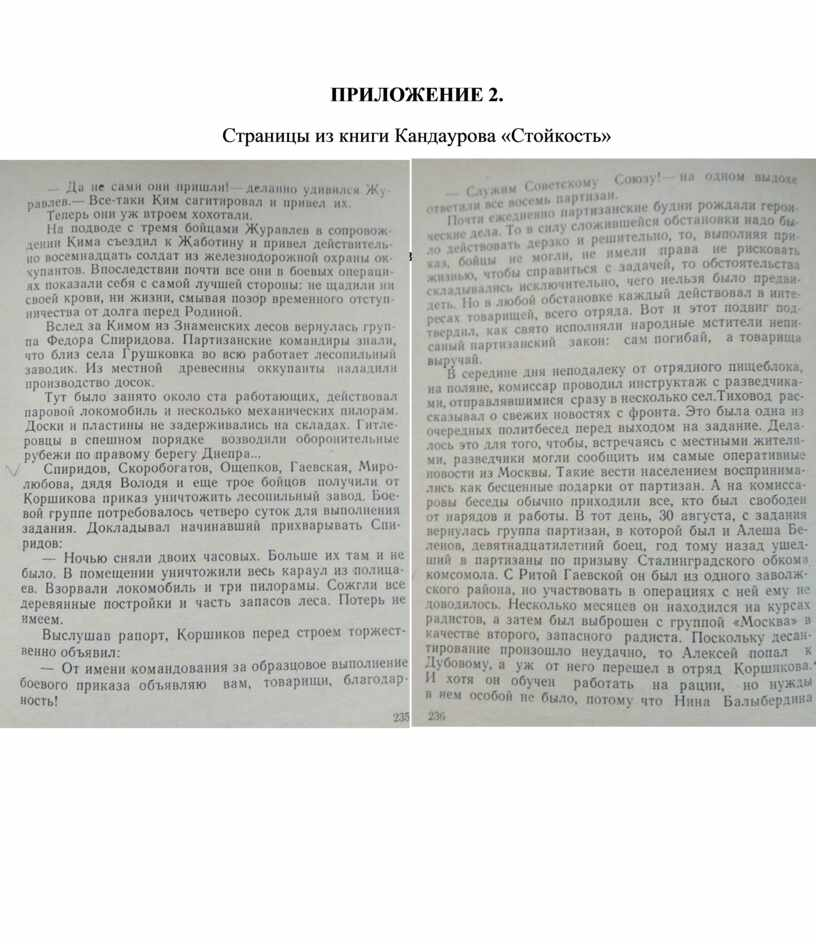ПРИЛОЖЕНИЕ 2. Страницы из книги