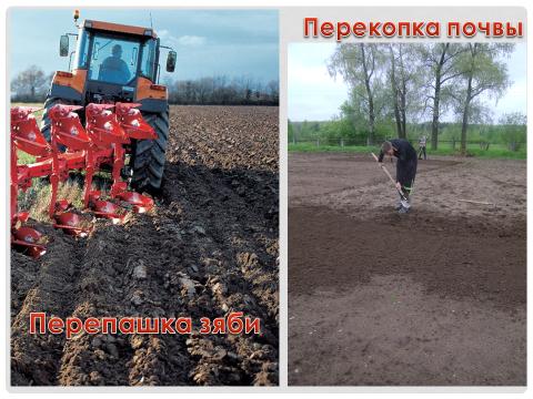 Презентация: «Весенняя обработка почвы».