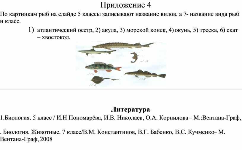 Приложение 4 По картинкам рыб на слайде 5 классы записывают название видов, а 7- название вида рыб и класс