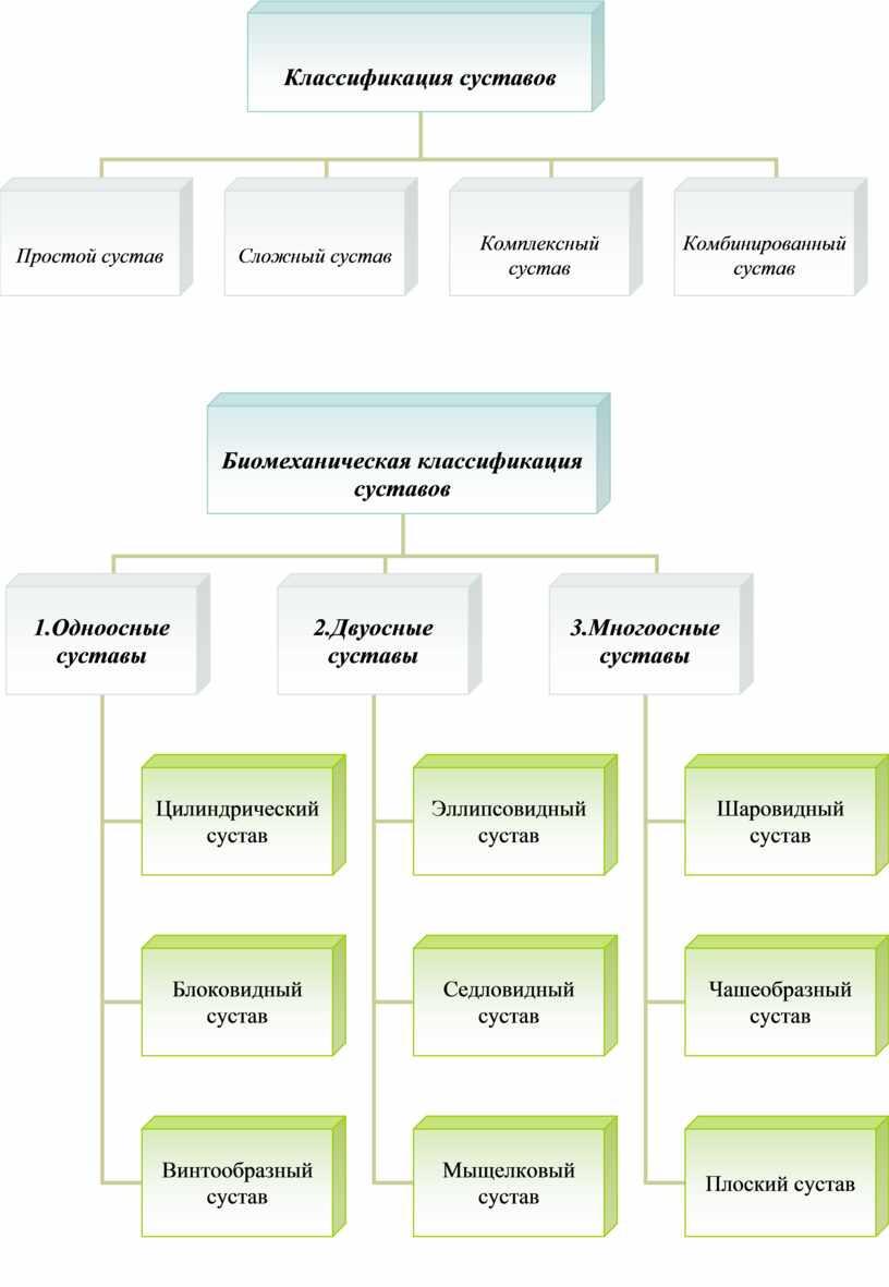 """Графологические схемы по теме """"Остеология"""""""