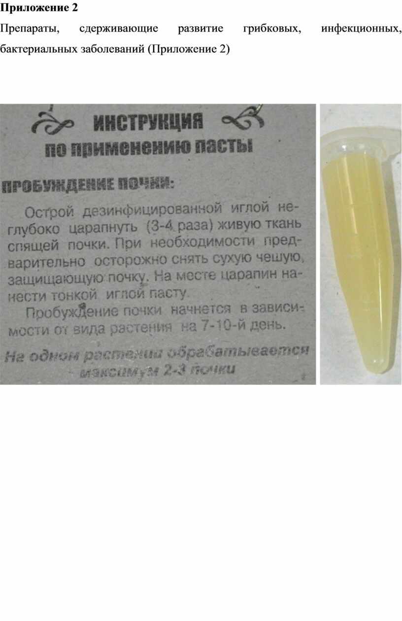 Приложение 2 Препараты, сдерживающие развитие грибковых, инфекционных, бактериальных заболеваний (Приложение 2)