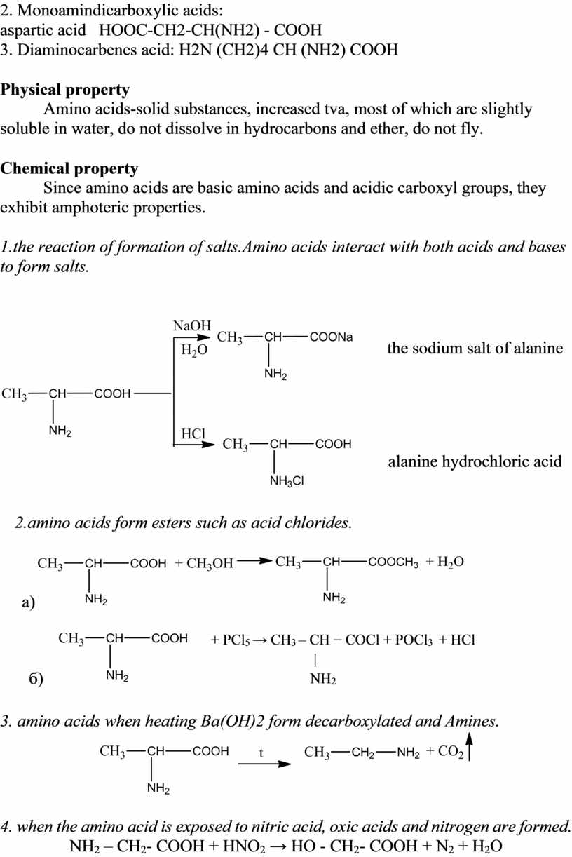 Monoamindicarboxylic acids: aspartic acid