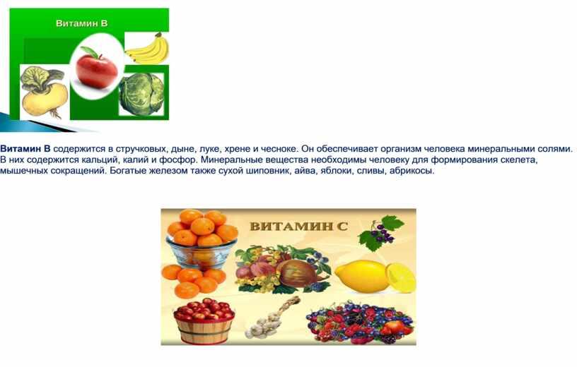 Витамин В содержится в стручковых, дыне, луке, хрене и чесноке