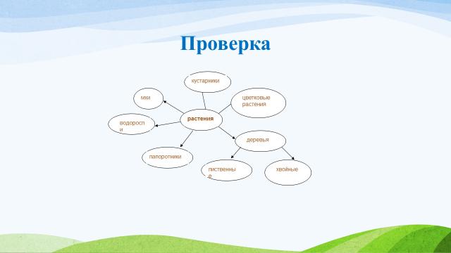 """Проект урока по  окружающему миру на  тему: """"Разнообразие растений""""(3 класс)"""