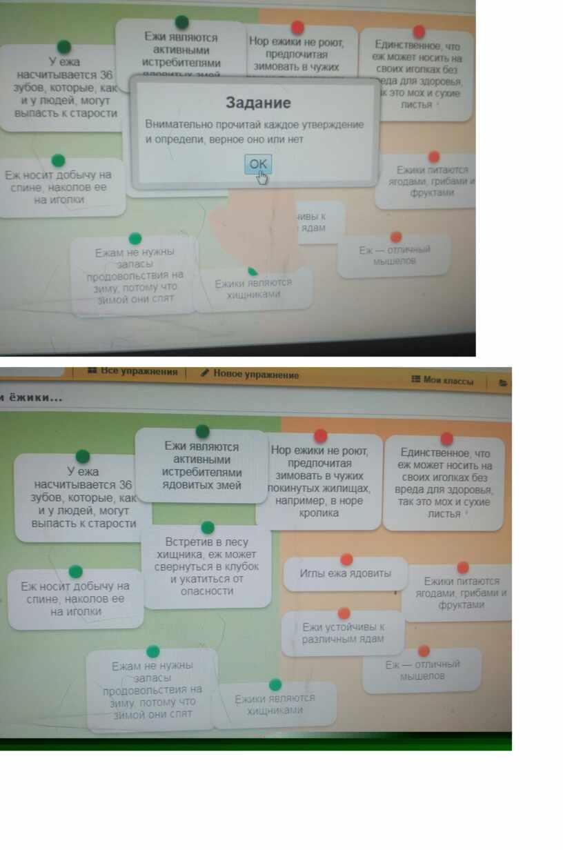 Формирование верных представлений о природе младших школьников средствами ИКТ