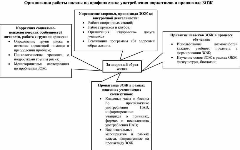 Организация работы школы по профилактике употребления наркотиков и пропаганде