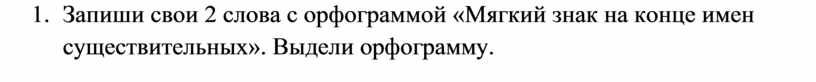Запиши свои 2 слова с орфограммой «Мягкий знак на конце имен существительных»