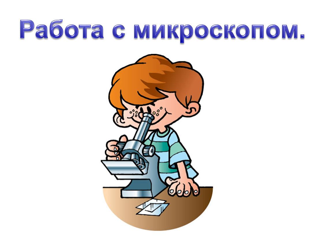 Работа с микроскопом.