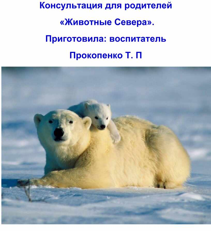 Консультация для родителей «Животные