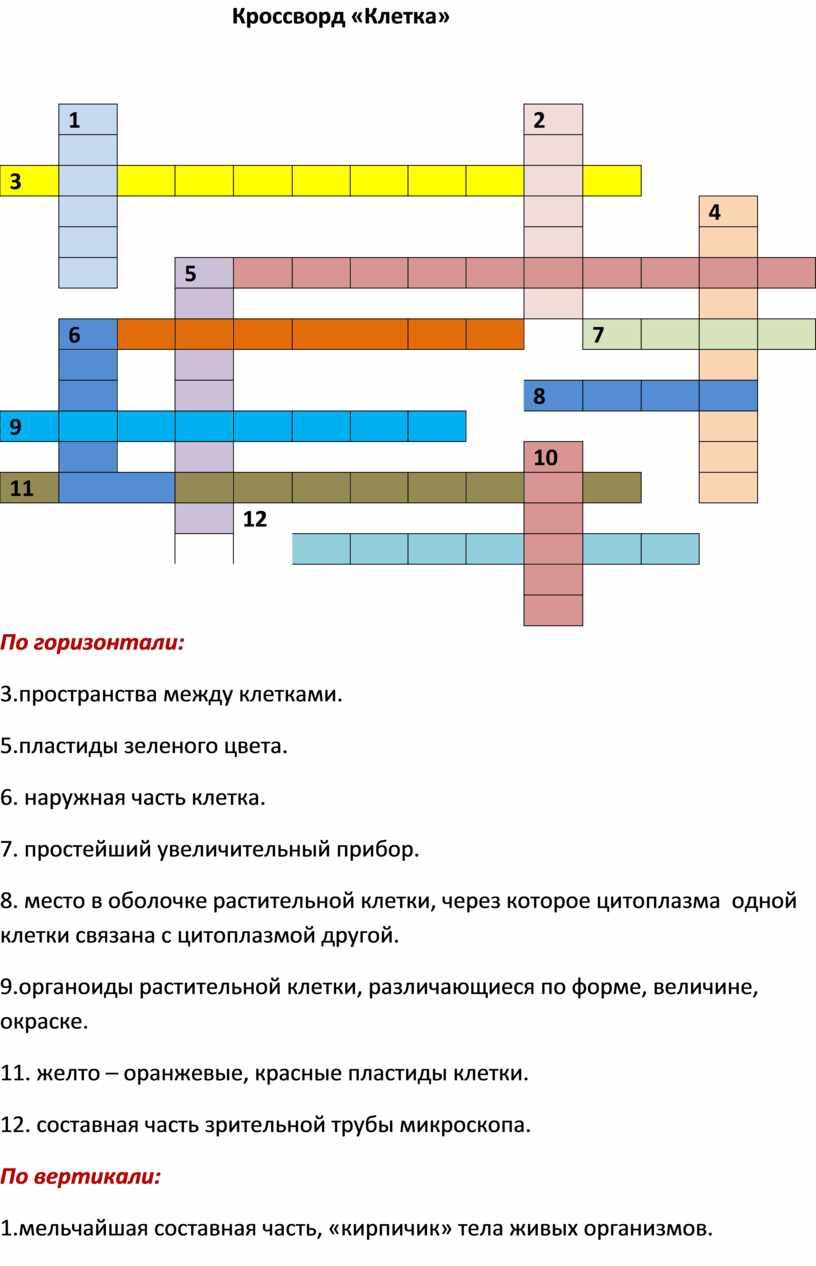 Кроссворд «Клетка» 1 2 3 4 5 6 7 8 9 10 11 12