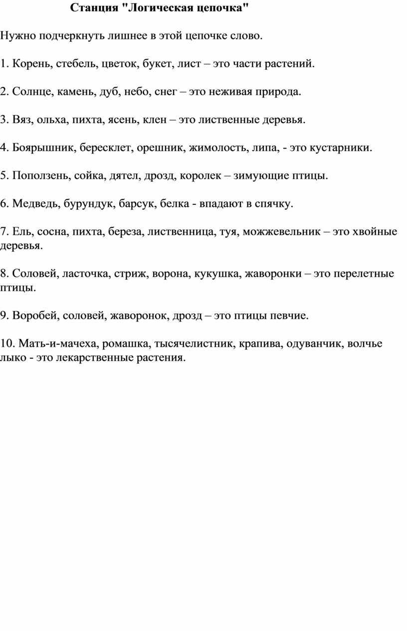 """Станция """"Логическая цепочка"""""""