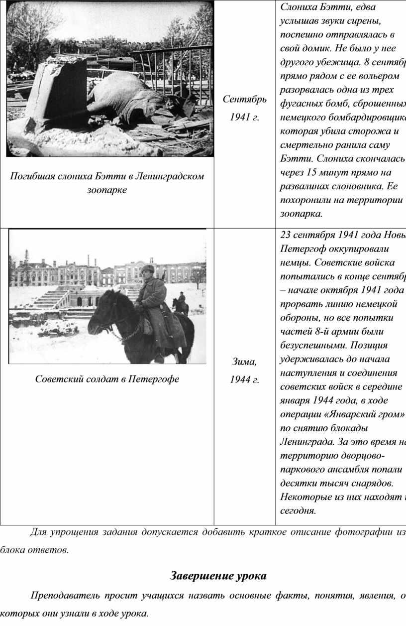 Погибшая слониха Бэтти в Ленинградском зоопарке
