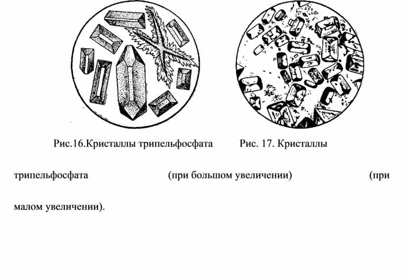 Рис.16.Кристаллы трипельфосфата