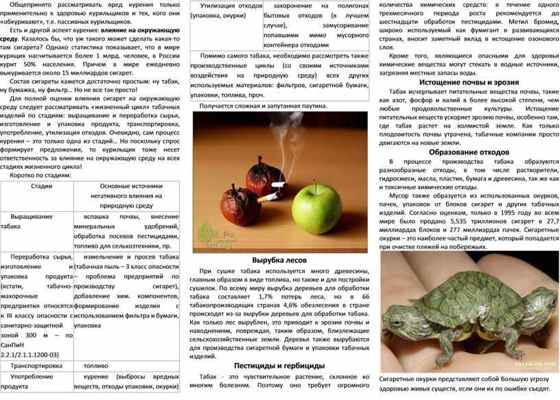 Общепринято рассматривать вред курения только применительно к здоровью курильщиков и тех, кого они «обкуривают», т