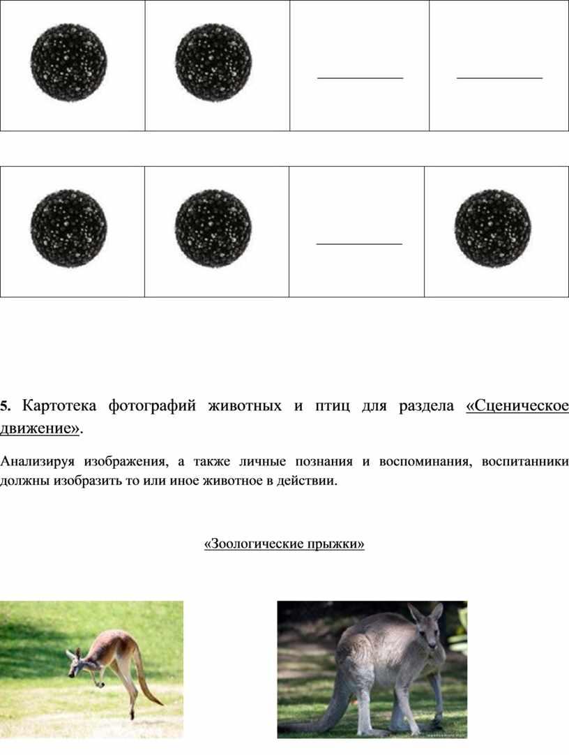 Картотека фотографий животных и птиц для раздела «Сценическое движение»