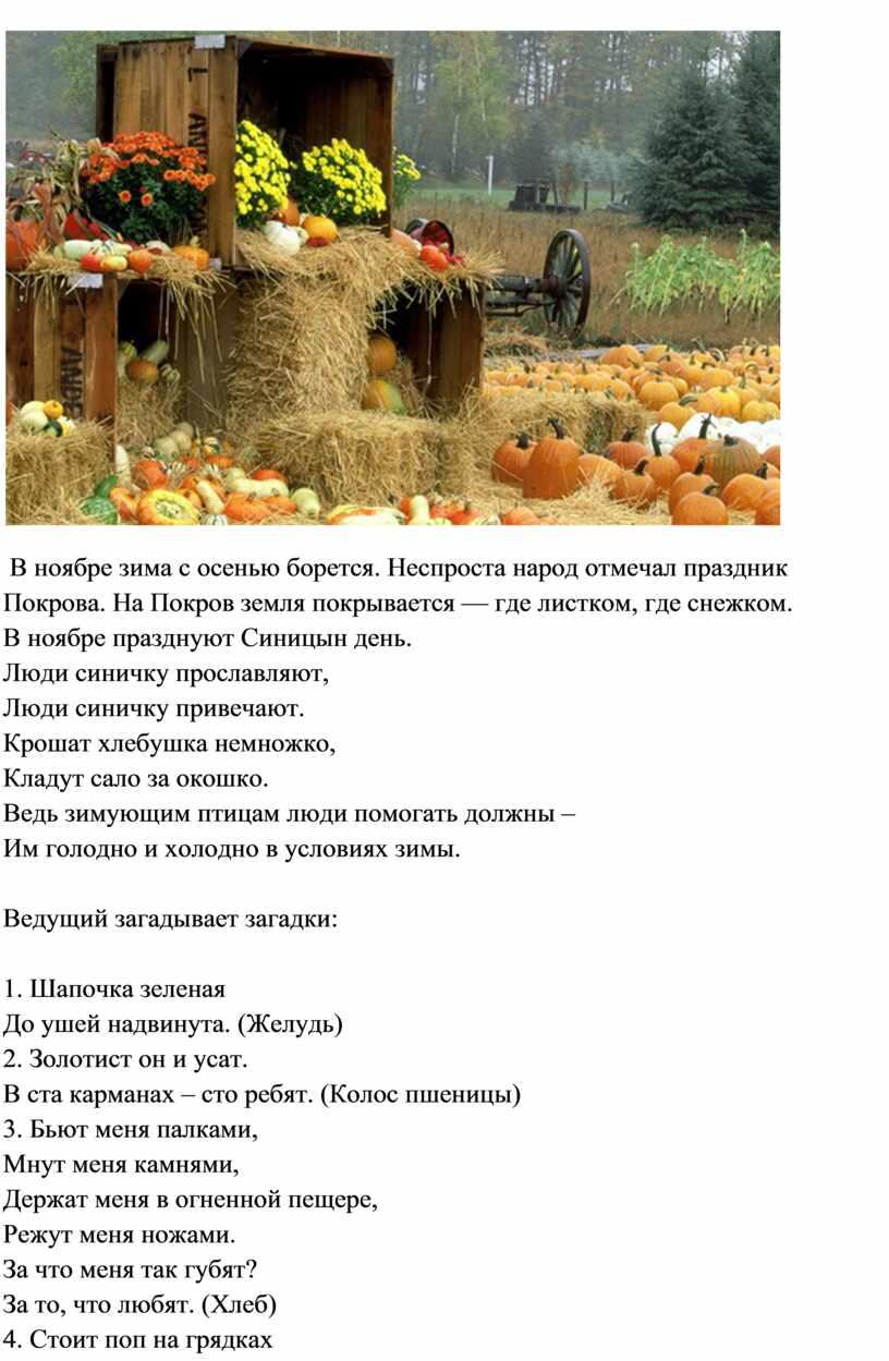 В ноябре зима с осенью борется