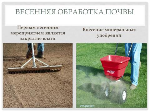 Презентация:«Лук репчатый. Агротехника  лука – репки через севок».