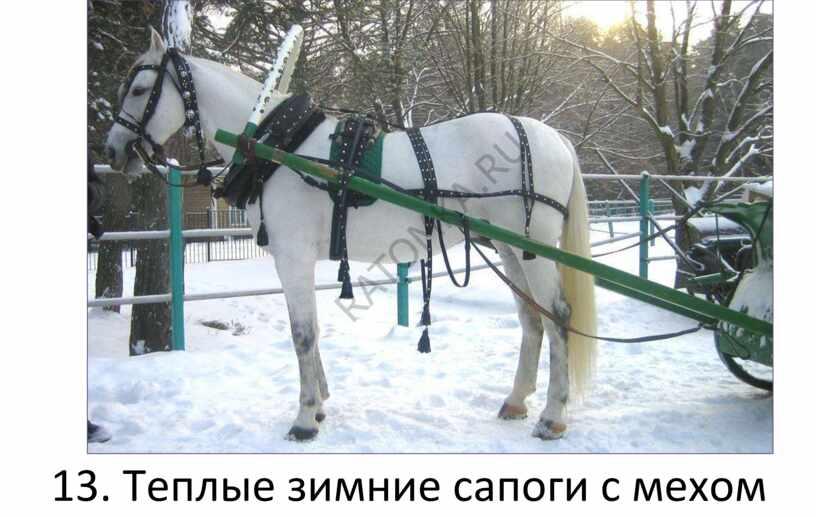 Теплые зимние сапоги с мехом