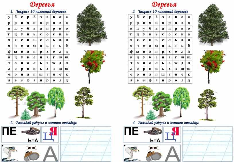 Деревья 1. Закрась 10 названий деревьев у б е р ё з а в о а р р в я н о р п с…