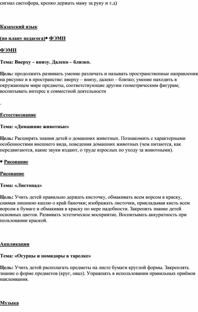Казахский язык (по плану педагога)