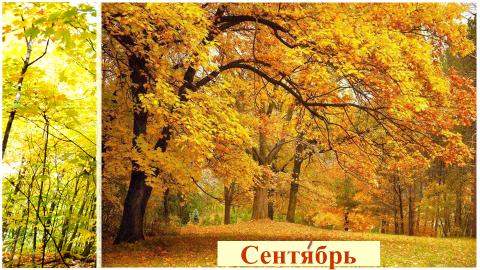 """""""Осень в гости к нам пришла"""""""