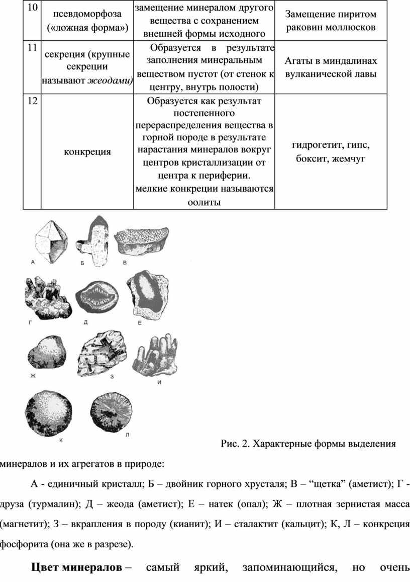 Замещение пиритом раковин моллюсков 11 секреция (крупные секреции называют жеодами)