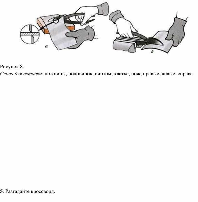 Рисунок 8. Слова для вставки : ножницы, половинок, винтом, хватка, нож, правые, левые, справа
