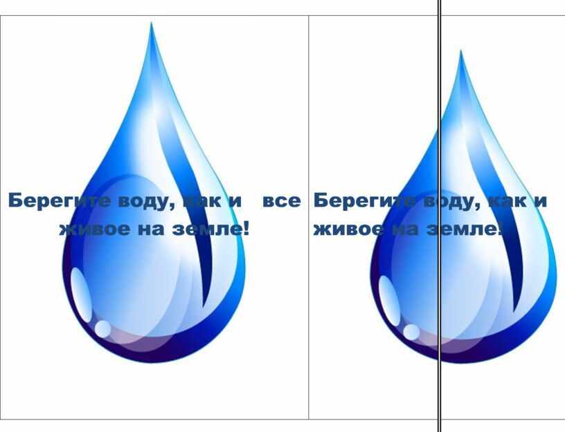 Берегите воду, как и все живое на земле!