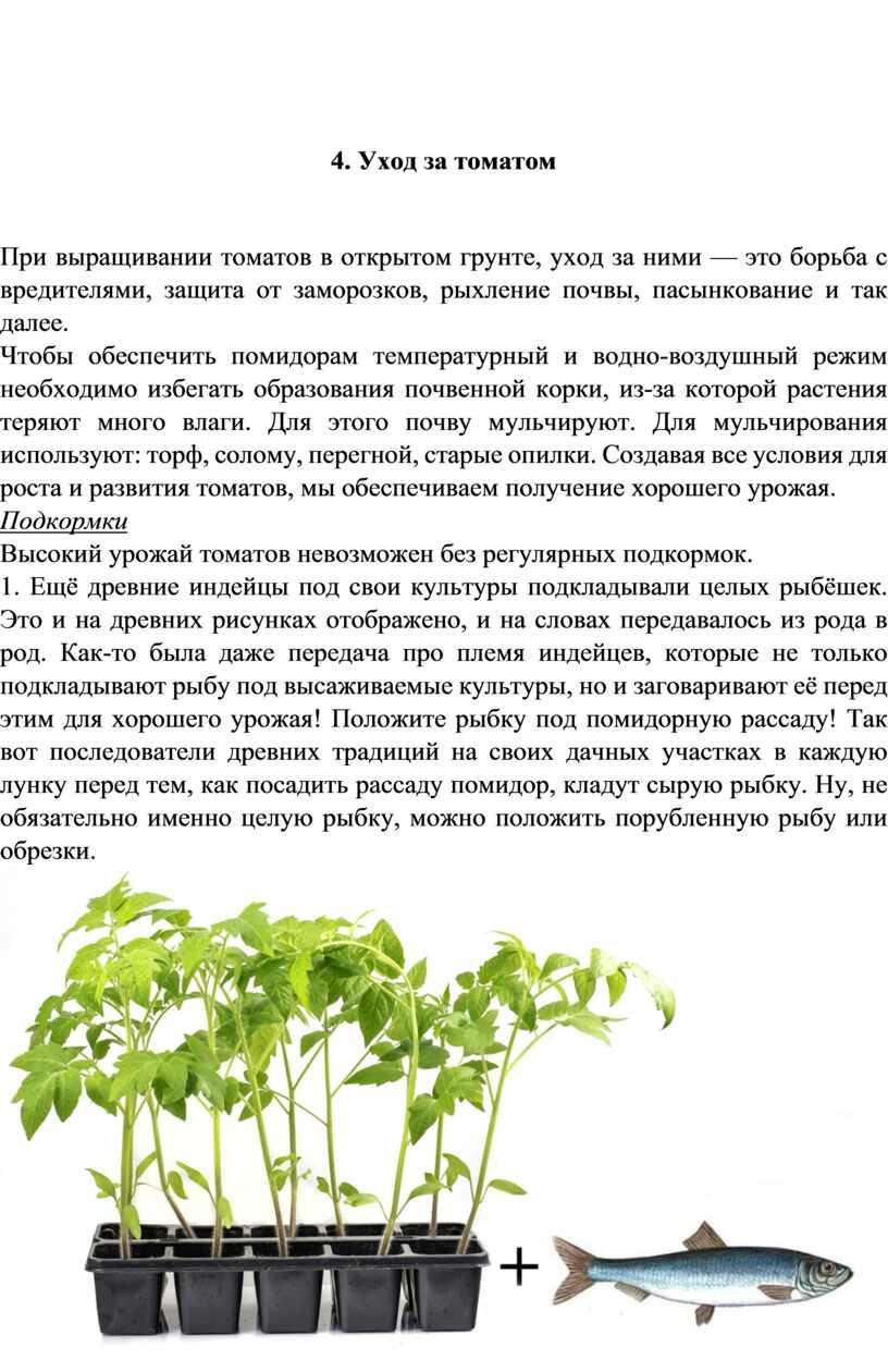 Уход за томатом При выращивании томатов в открытом грунте, уход за ними — это борьба с вредителями, защита от заморозков, рыхление почвы, пасынкование и так…