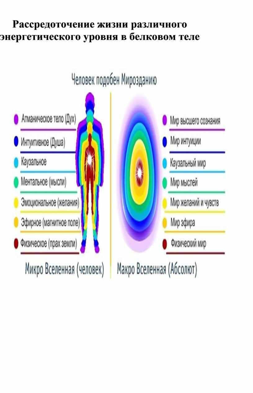 Рассредоточение жизни различного энергетического уровня в белковом теле
