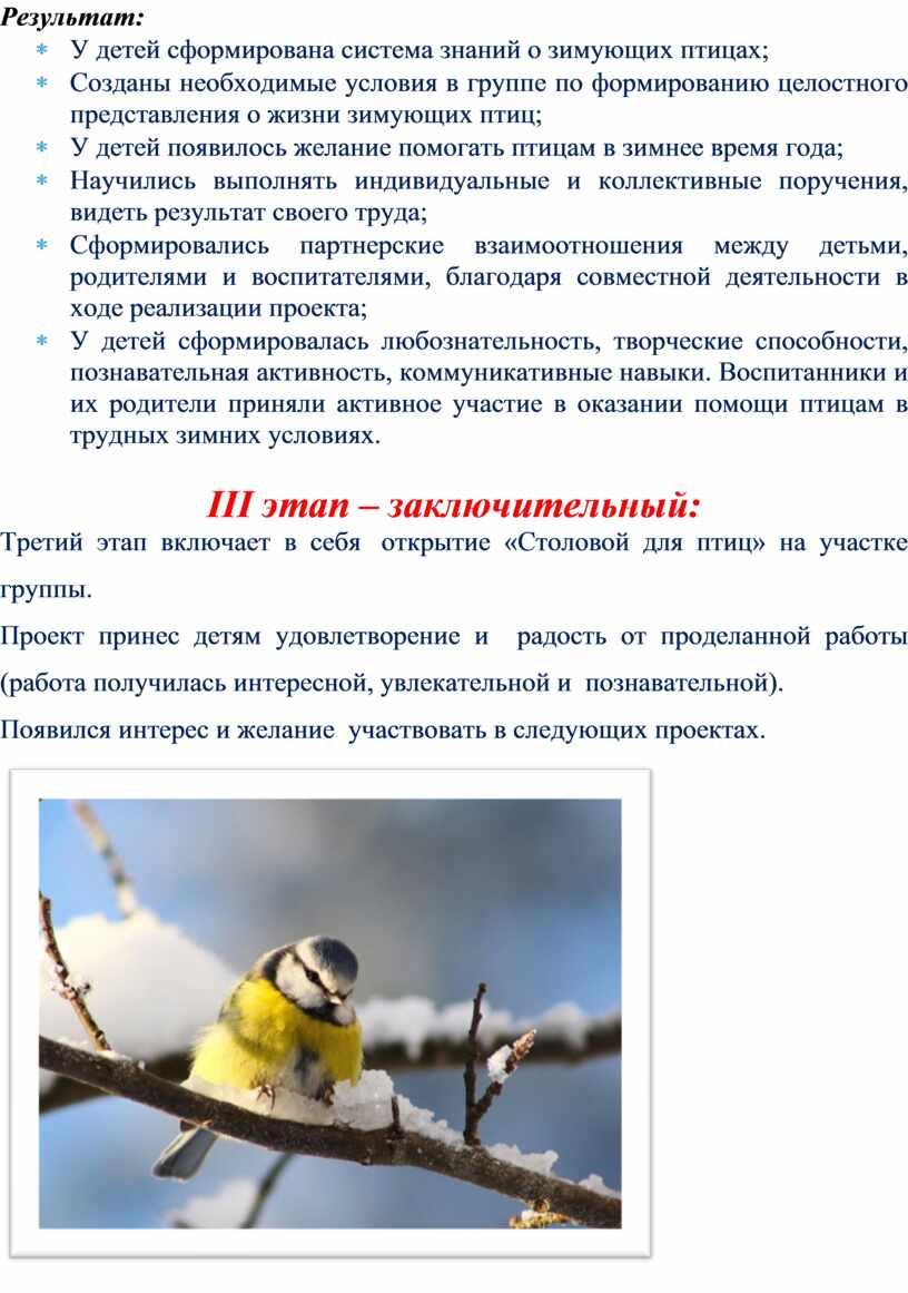 Результат: * У детей сформирована система знаний о зимующих птицах; *