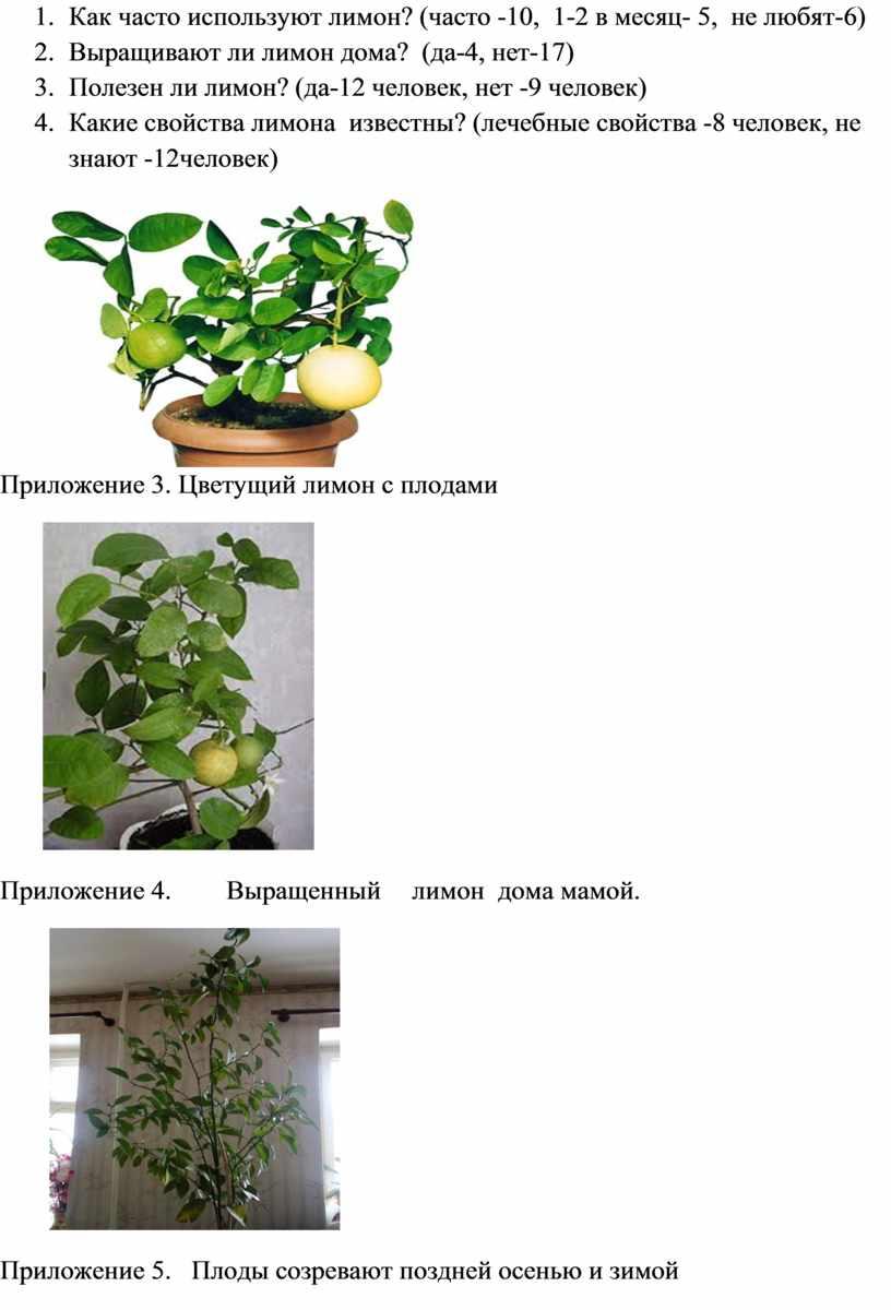 Как часто используют лимон? (часто -10, 1-2 в месяц- 5, не любят-6) 2