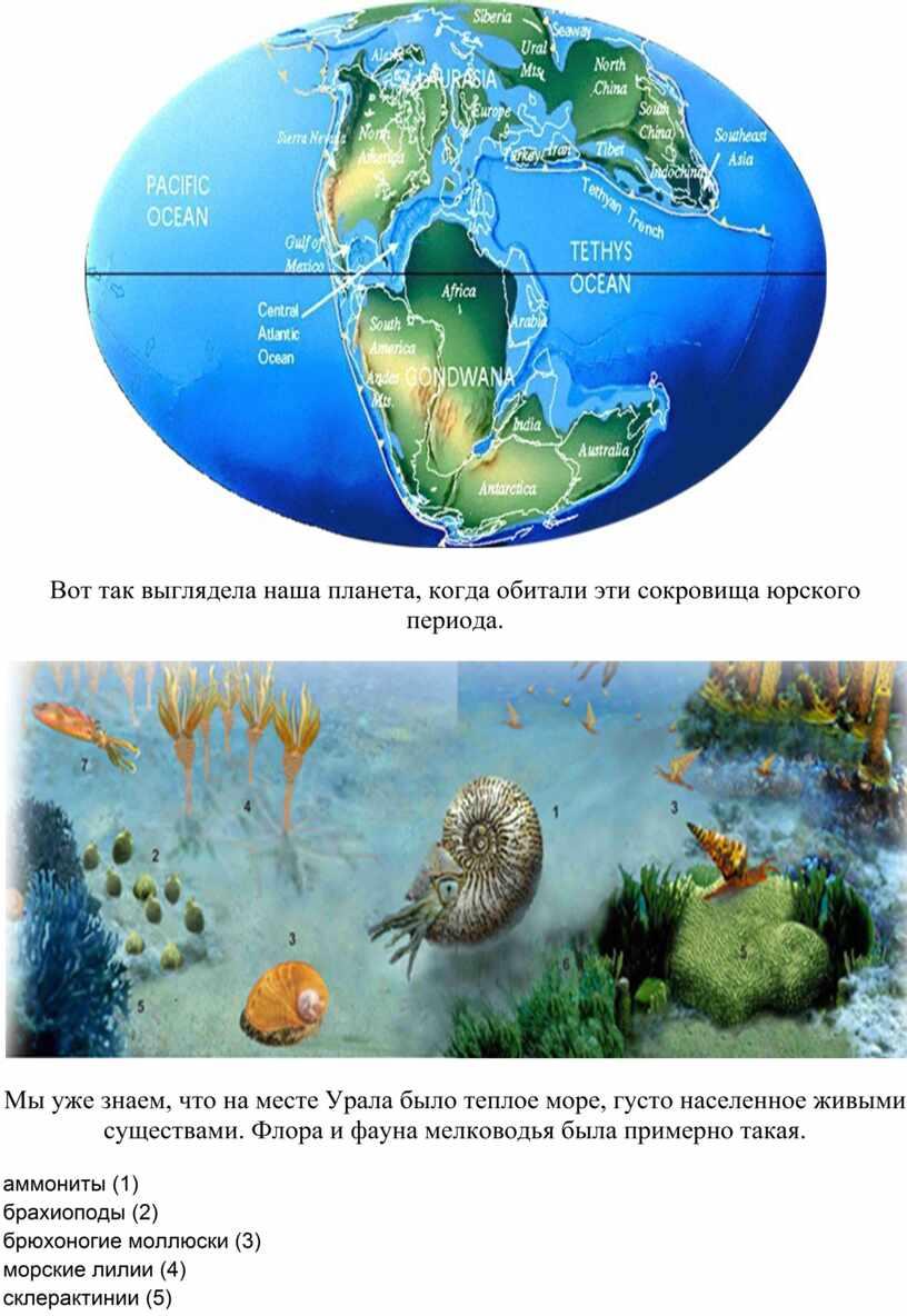 Вот так выглядела наша планета, когда обитали эти сокровища юрского периода