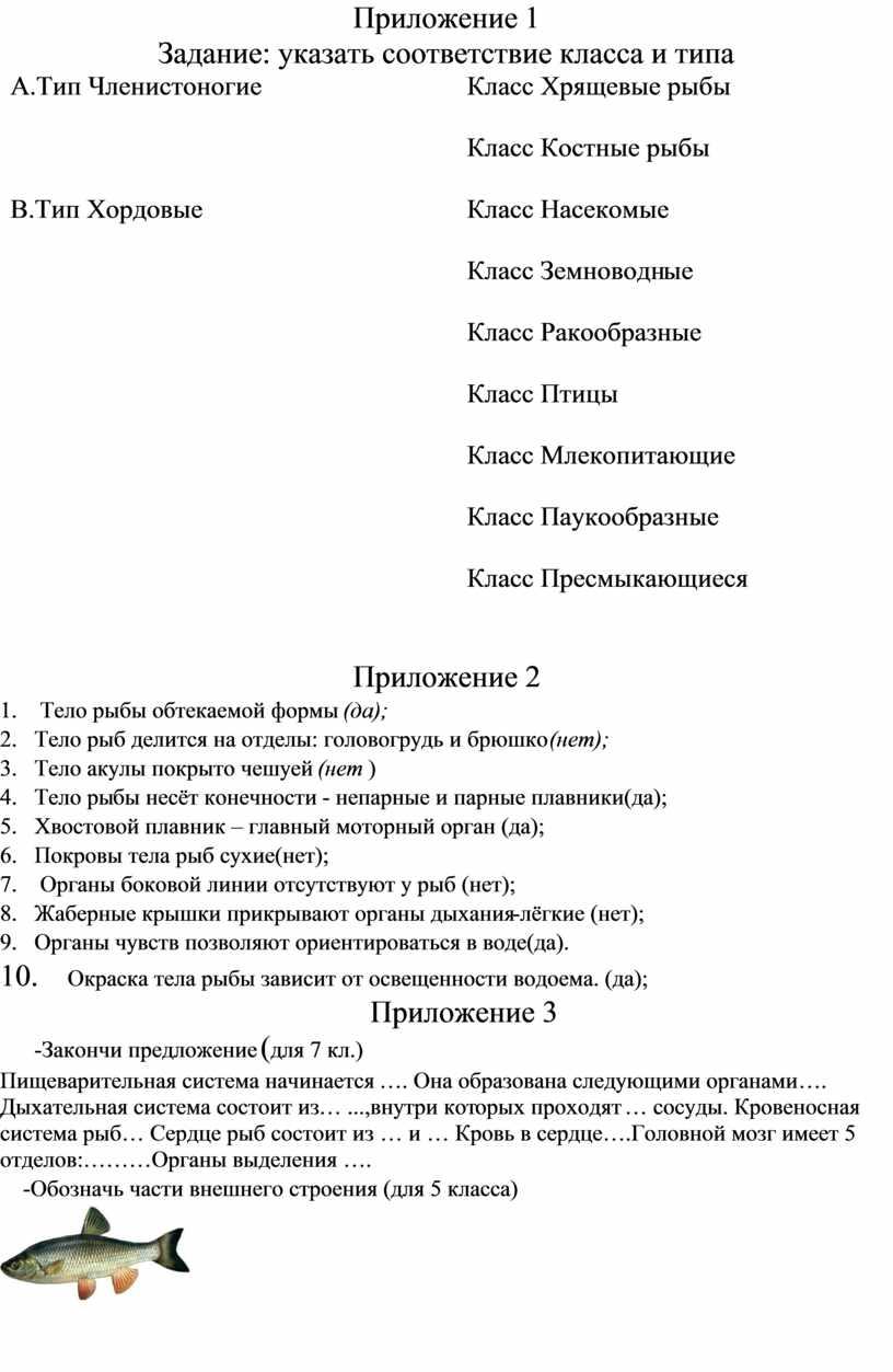 Приложение 1 Задание: указать соответствие класса и типа
