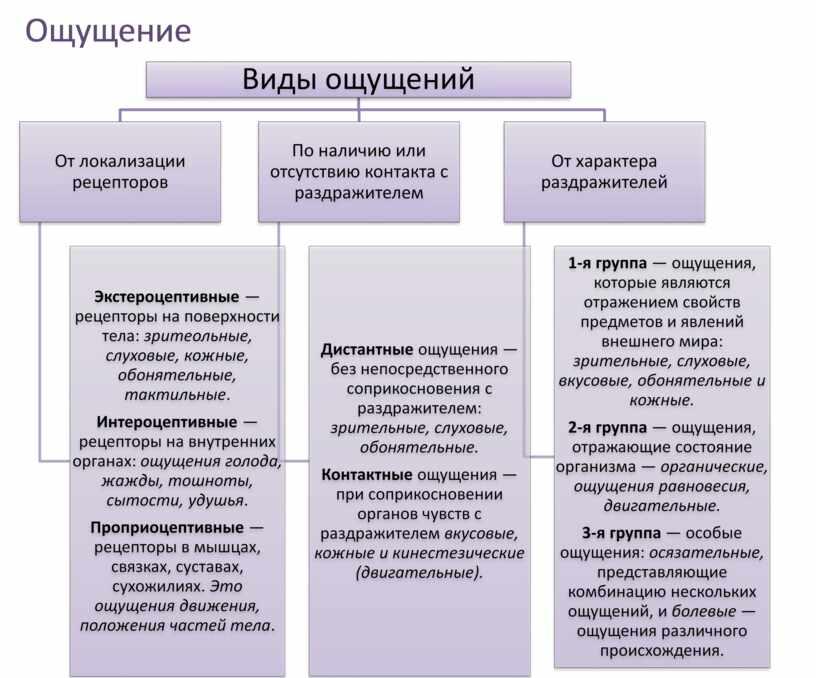 Виды ощущений.Свойства ощущений. Психология в таблицах.