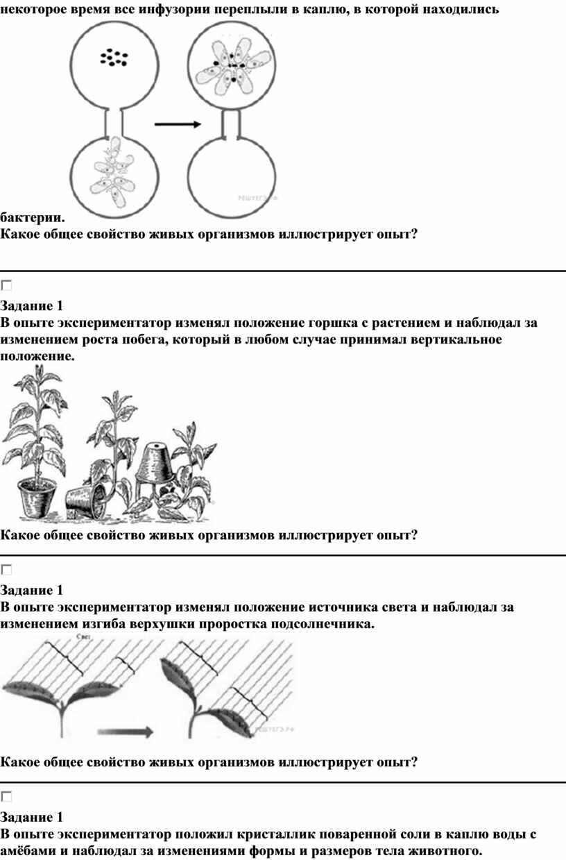 Какое общее свойство живых организмов иллюстрирует опыт?