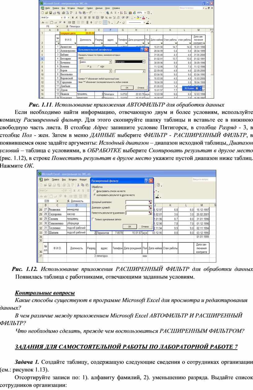 Рис. 1.11 . Использование приложения