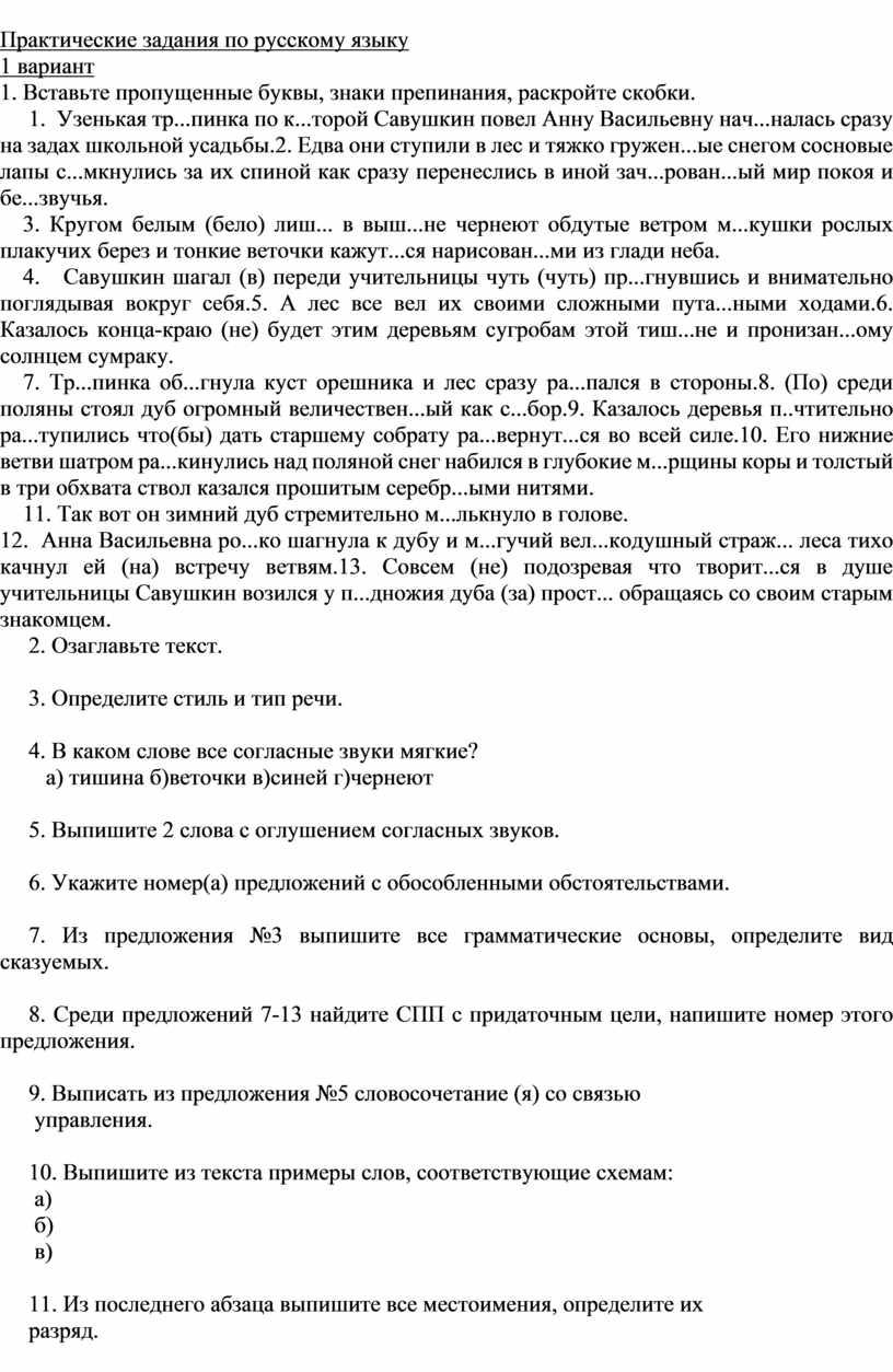 Практические задания по русскому языку 1 вариант 1