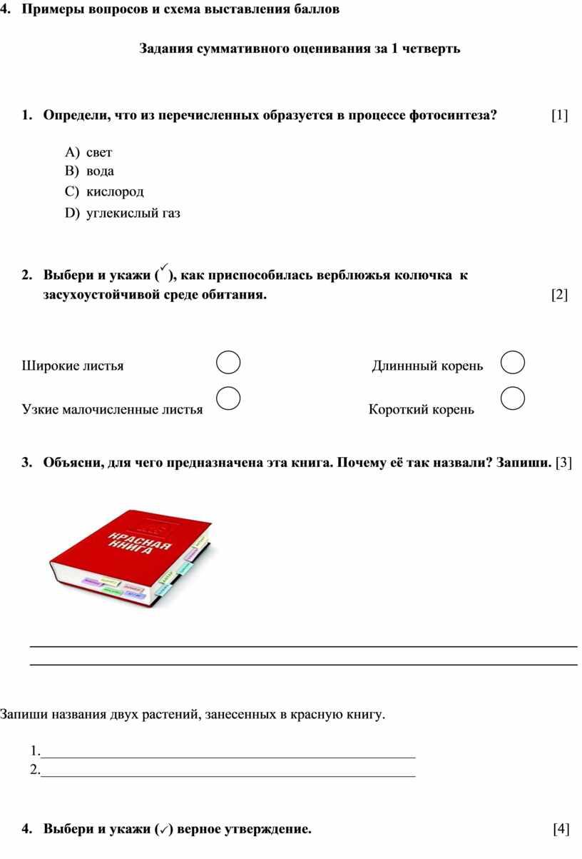 Примеры вопросов и схема выставления баллов