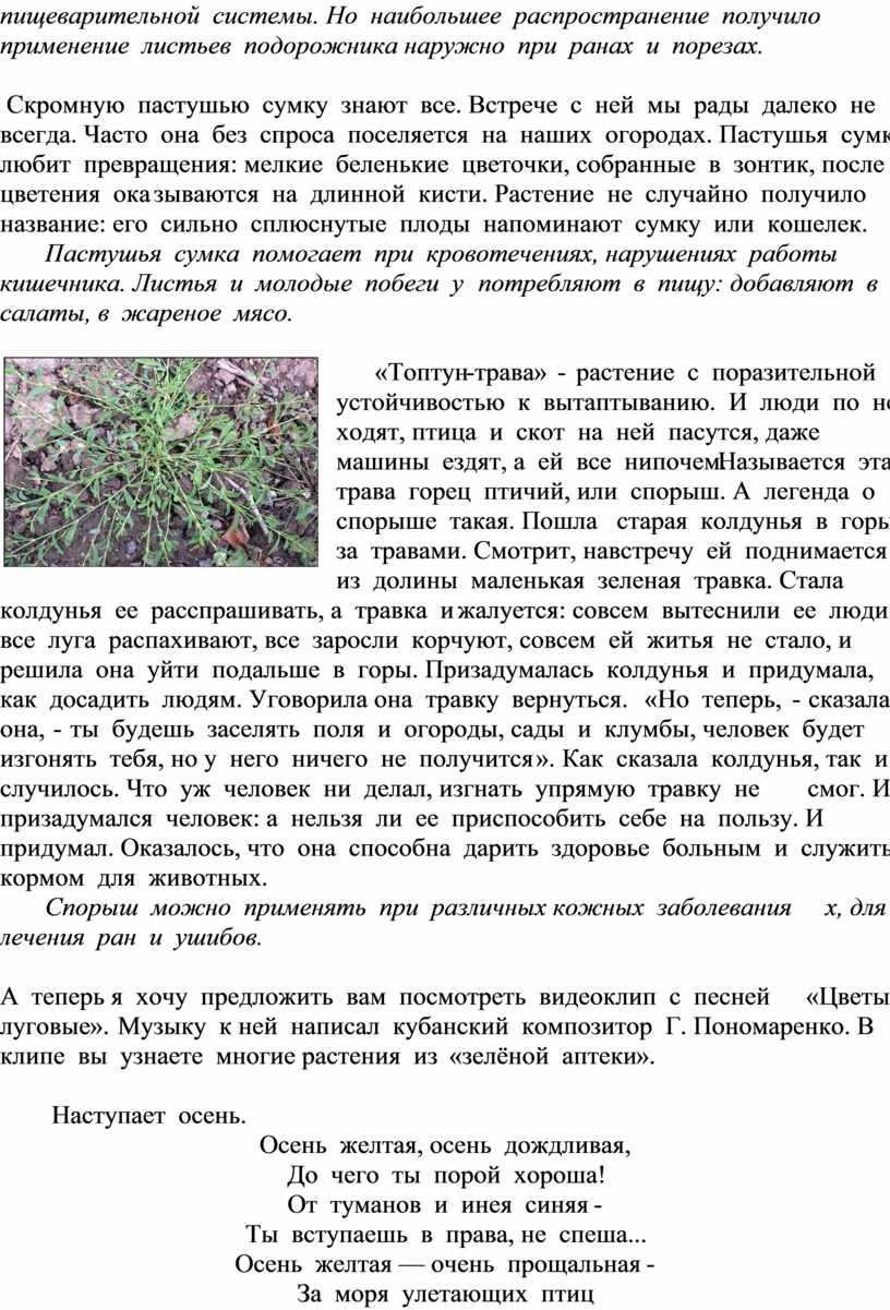 Но наибольшее распространение получило применение листьев подорожника наружно при ранах и порезах