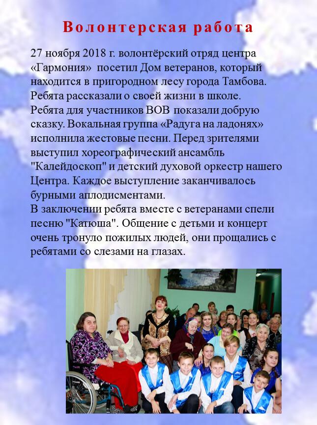 Волонтерская работа 27 ноября 2018 г