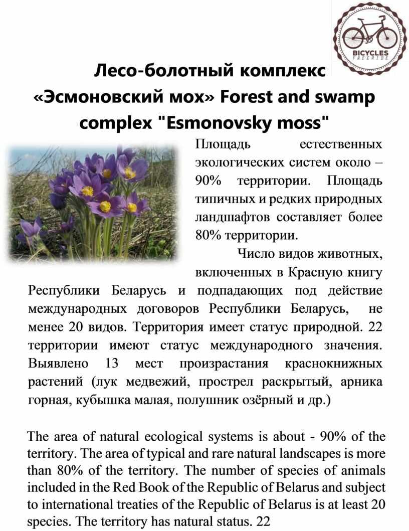 Лесо-болотный комплекс «Эсмоновский мох»